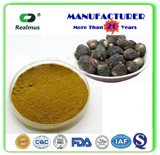 pure natural organic black maca extract men health china supplier GMP